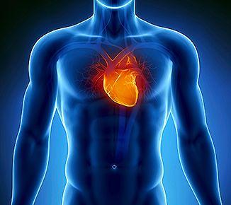 Fisioterapia corazón